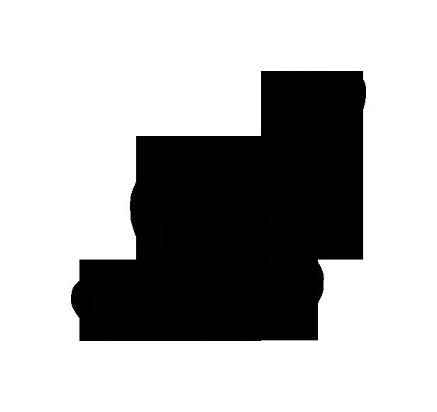 Logo lys zonder achtergrond